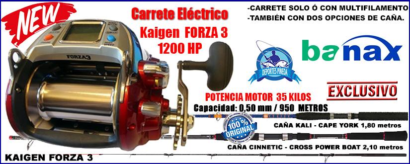 Kaigen FORZA3 1200HP